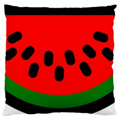 Watermelon Melon Seeds Produce Large Flano Cushion Case (One Side)