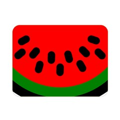 Watermelon Melon Seeds Produce Double Sided Flano Blanket (Mini)