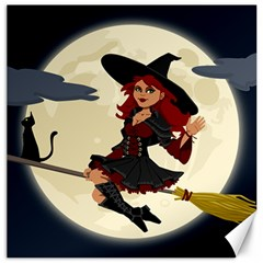 Witch Witchcraft Broomstick Broom Canvas 20  x 20
