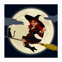 Witch Witchcraft Broomstick Broom Medium Glasses Cloth
