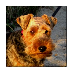 Welch Terrier Tile Coasters