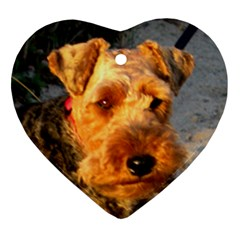 Welch Terrier Ornament (Heart)