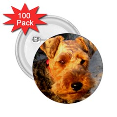 Welch Terrier 2.25  Buttons (100 pack)