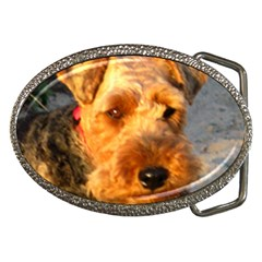 Welch Terrier Belt Buckles