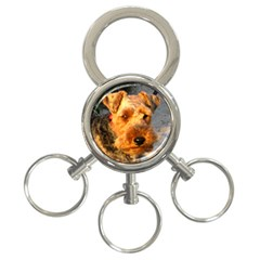 Welch Terrier 3-Ring Key Chains