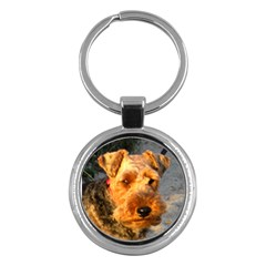 Welch Terrier Key Chains (Round)