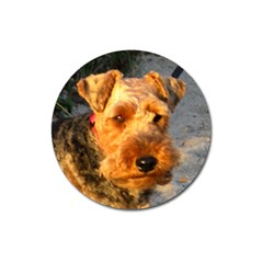 Welch Terrier Magnet 3  (Round)