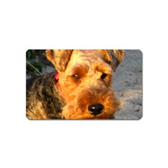 Welch Terrier Magnet (Name Card)