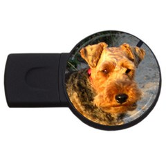 Welch Terrier USB Flash Drive Round (2 GB)