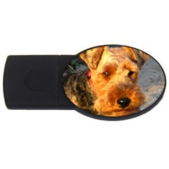 Welch Terrier USB Flash Drive Oval (1 GB)