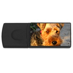 Welch Terrier USB Flash Drive Rectangular (2 GB)