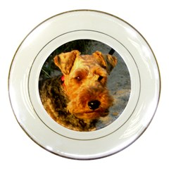 Welch Terrier Porcelain Plates