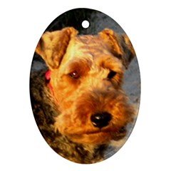 Welch Terrier Oval Ornament (Two Sides)