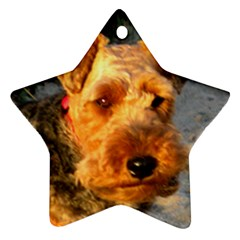 Welch Terrier Star Ornament (Two Sides)