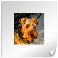 Welch Terrier Canvas 12  x 12