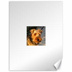 Welch Terrier Canvas 18  x 24