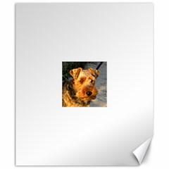 Welch Terrier Canvas 20  x 24