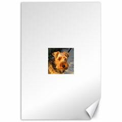 Welch Terrier Canvas 20  x 30
