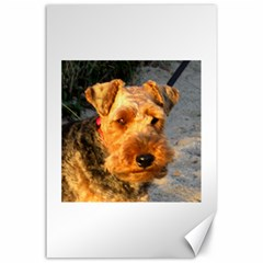 Welch Terrier Canvas 24  x 36