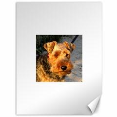 Welch Terrier Canvas 36  x 48