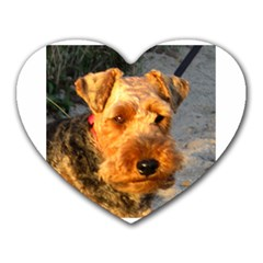 Welch Terrier Heart Mousepads