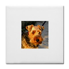 Welch Terrier Face Towel