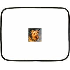 Welch Terrier Double Sided Fleece Blanket (Mini)