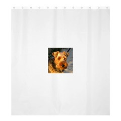Welch Terrier Shower Curtain 66  x 72  (Large)