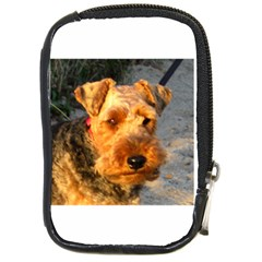 Welch Terrier Compact Camera Cases