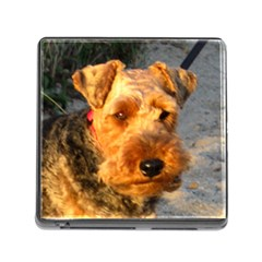 Welch Terrier Memory Card Reader (Square)