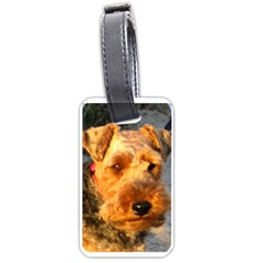Welch Terrier Luggage Tags (Two Sides)