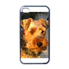 Welch Terrier Apple iPhone 4 Case (Black)