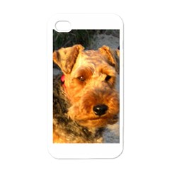 Welch Terrier Apple iPhone 4 Case (White)