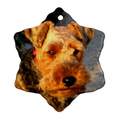 Welch Terrier Ornament (Snowflake)