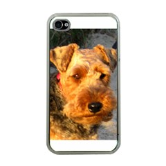 Welch Terrier Apple iPhone 4 Case (Clear)
