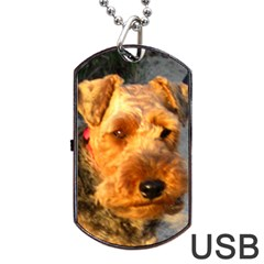Welch Terrier Dog Tag USB Flash (Two Sides)