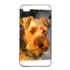 Welch Terrier Apple iPhone 4/4s Seamless Case (Black)