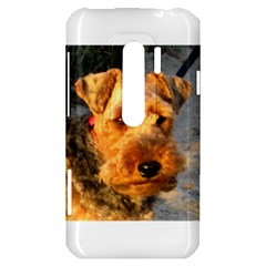 Welch Terrier HTC Evo 3D Hardshell Case