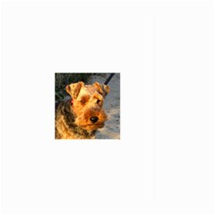 Welch Terrier Large Garden Flag (Two Sides)