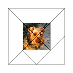 Welch Terrier Acrylic Tangram Puzzle (6  x 6 )