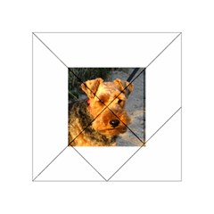 Welch Terrier Acrylic Tangram Puzzle (4  x 4 )