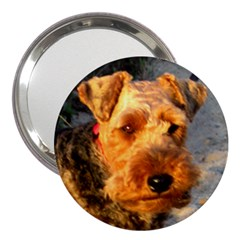 Welch Terrier 3  Handbag Mirrors