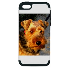 Welch Terrier Apple iPhone 5 Hardshell Case (PC+Silicone)
