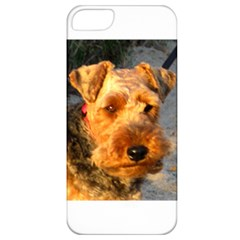 Welch Terrier Apple iPhone 5 Classic Hardshell Case