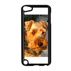 Welch Terrier Apple iPod Touch 5 Case (Black)