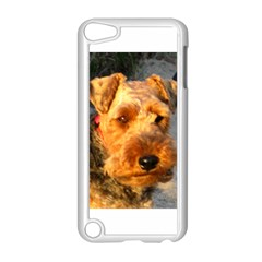 Welch Terrier Apple iPod Touch 5 Case (White)