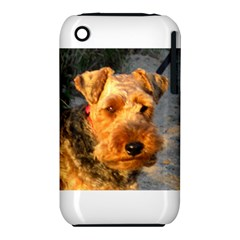 Welch Terrier Apple iPhone 3G/3GS Hardshell Case (PC+Silicone)