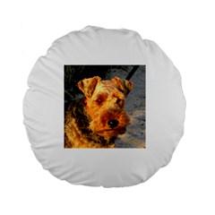 Welch Terrier Standard 15  Premium Round Cushions