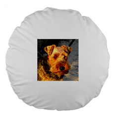 Welch Terrier Large 18  Premium Round Cushions