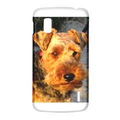 Welch Terrier LG Nexus 4